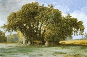 A Tree in a gouache, by Jean-Pierre Houel, ca 1777