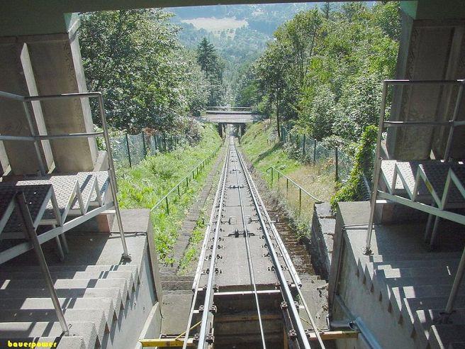 Black Forest Torte (Schwarzwaelder Kirschtorte) - Merkurbahn, Black Forest