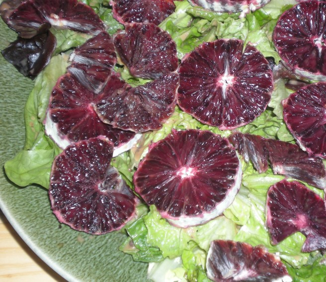 Tropical Salads - Blood Orange Slices over Oak Leaf Lettuce