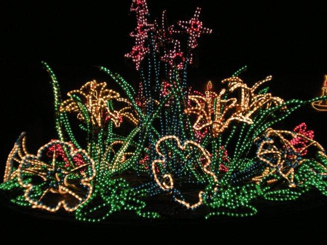 Happy New Year - Garden of Light