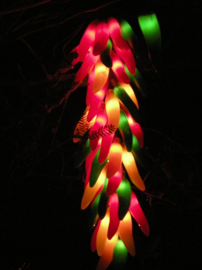 Happy New Year - Chili Ristra