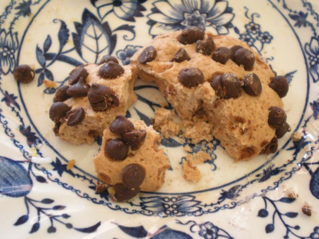 Shabtai Bakery Product Review - Chocolate Chip Cookies