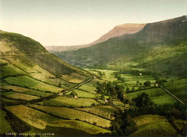 Champ - Glenariff County Antrim, Ireland