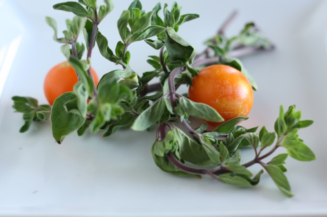 Savory Tomato-Herb Galette