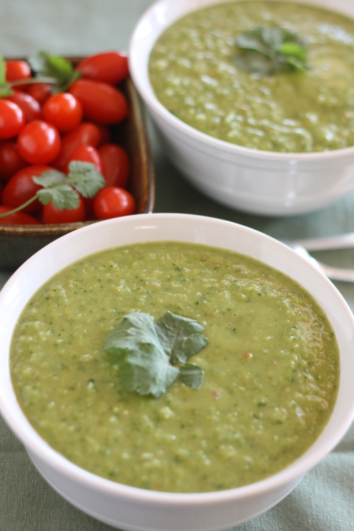 Energy Soup, copyright 2013, gfcelebration.com, All rights reserved