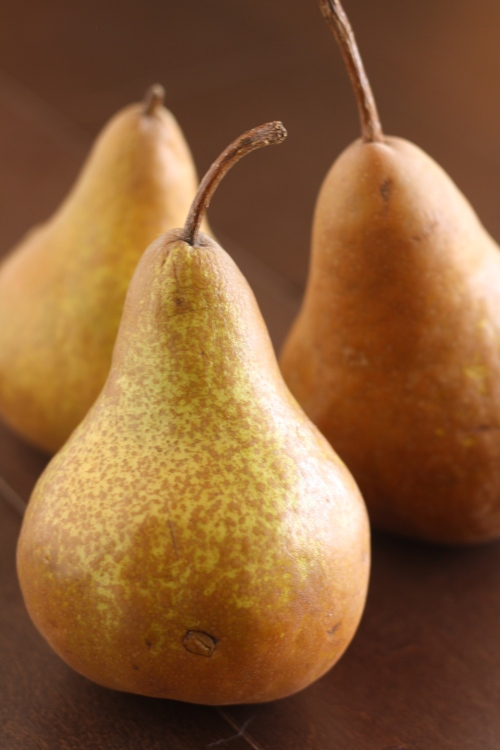 Bosc pears, copyright 2013, gfcelebration.com All rights reserved.